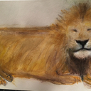 LionI Am