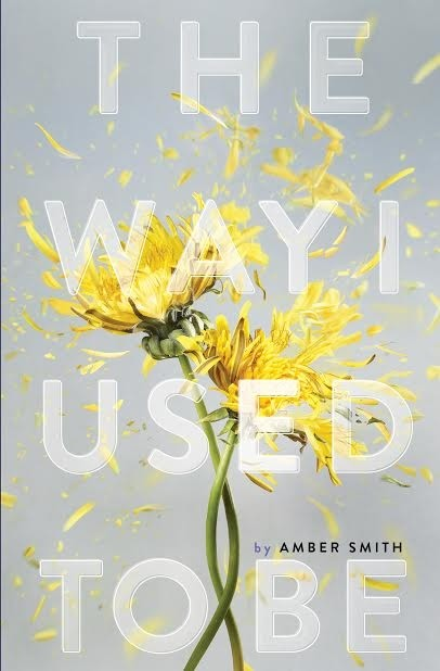 Author Chat with Amber Smith