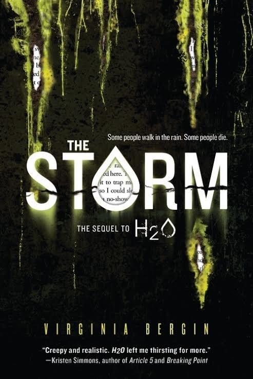 Spotlight on The Storm, Plus Excerpt & Giveaway!