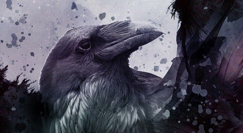 It's Live!! Cover Reveal: Black Bird of the Gallows by Meg Kassel + Giveaway (US Only)