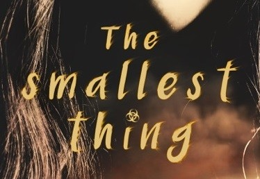 It's Live!! Cover Reveal: The Smallest Thing by Lisa Manterfield + Giveaway (US/Intl)