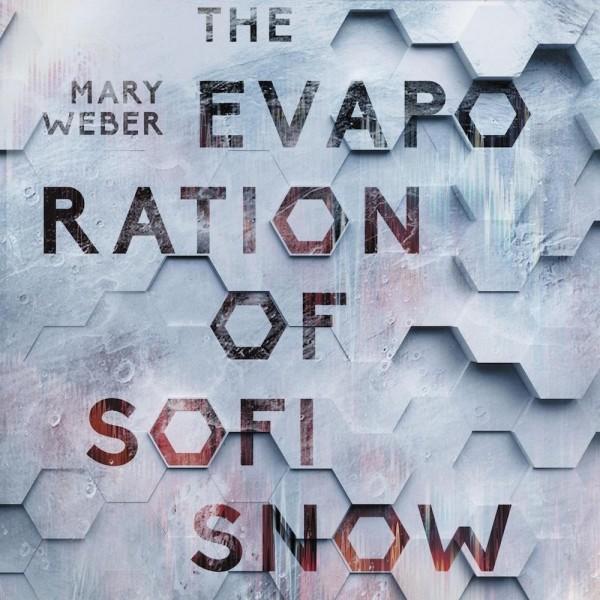 Evaporation-of-Sofi-Snow