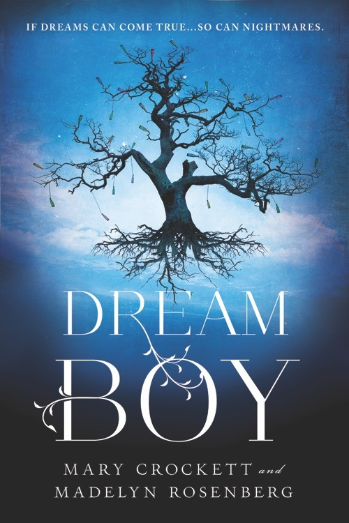 Giveaway: Dreamboy by Mary Crockett and Madelyn Rosenberg (US & Canada Only)