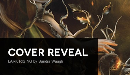It's live!! Cover Reveal: Lark Rising by Sandra Waugh + Giveaway (US only)