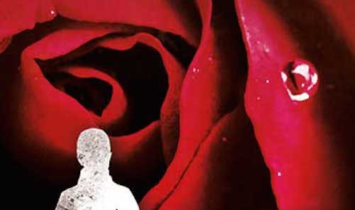It's live!! Cover Reveal: Briar Rose by Jane Yolen
