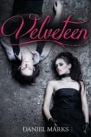 Velveteen (Velveteen #1)