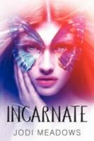 Incarnate (Newsoul #1)