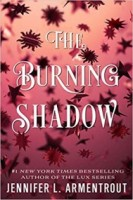 The Burning Shadow (Origin Series, #2)