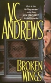 Broken Wings (Broken Wings #1)