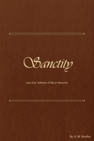 Sanctity - New Book Cover.jpg