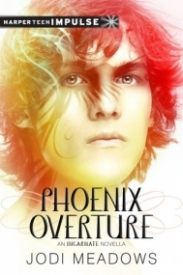 Phoenix Overture (Newsoul #2.5)