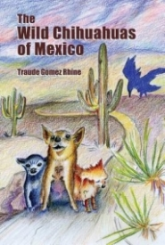 The Wild Chihuahuas of Mexico