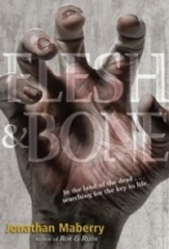 Flesh & Bone (Benny Imura #3)