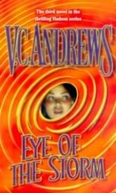 Eye of the Storm (Hudson #3)