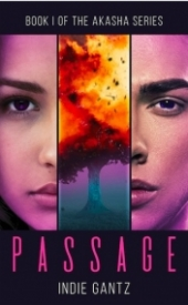 Passage: Book I of The Akasha Series