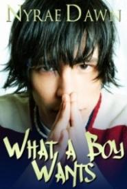 What A Boy Wants