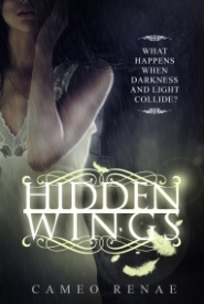 Hidden Wings (Hidden Wings #1)