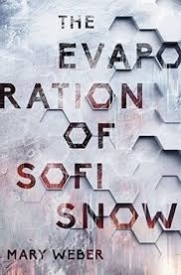 THE EVAPORATION OF SOFI SNOW