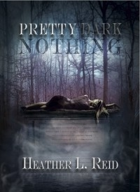 Pretty Dark Nothing (Pretty Dark Nothing #1)