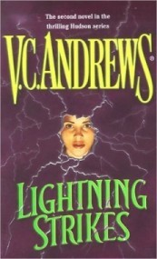 Lightning Strikes (Hudson #2)