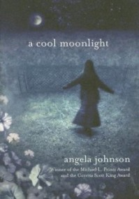 A Cool Moonlight