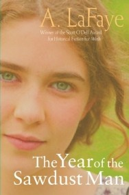 The Year of the Sawdust Man (Nissa #1)