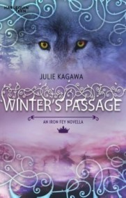 Winter's Passage (The Iron Fey #1.5)