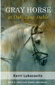 Gray Horse at Oak Lane Stable