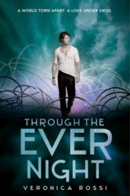 Through the Ever Night (Under the Never Sky #2)