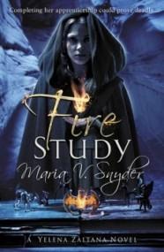 Fire Study (Study #3)