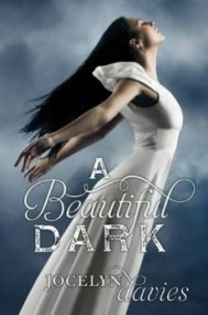 A Beautiful Dark (A Beautiful Dark #1)
