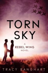 Torn Sky (Rebel Wing #3)