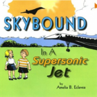 Skybound in a Supersonic Jet