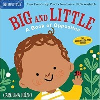 Indestructibles: Big and Little: A Book of Opposites