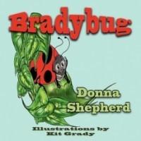 Bradybug