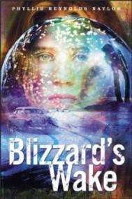 Blizzard's Wake
