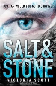 Salt & Stone (Fire & Flood #2)