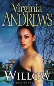 Willow (De Beers #1)
