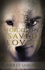 Forgotten Saved Loved