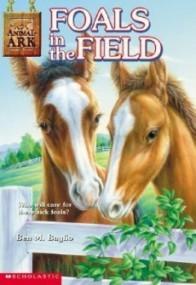 Foals in the Field (Animal Ark #24)
